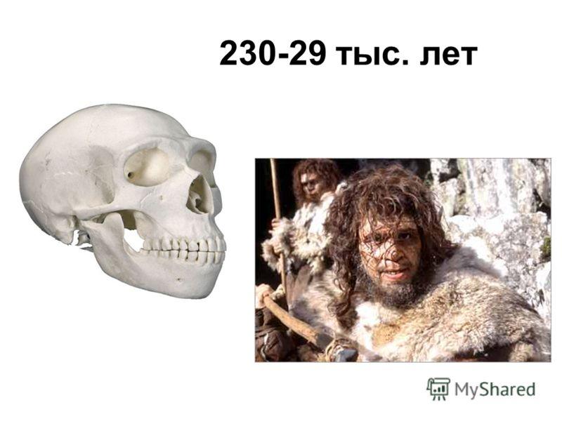 230-29 тыс. лет