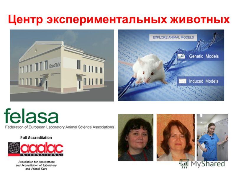 Центр экспериментальных животных