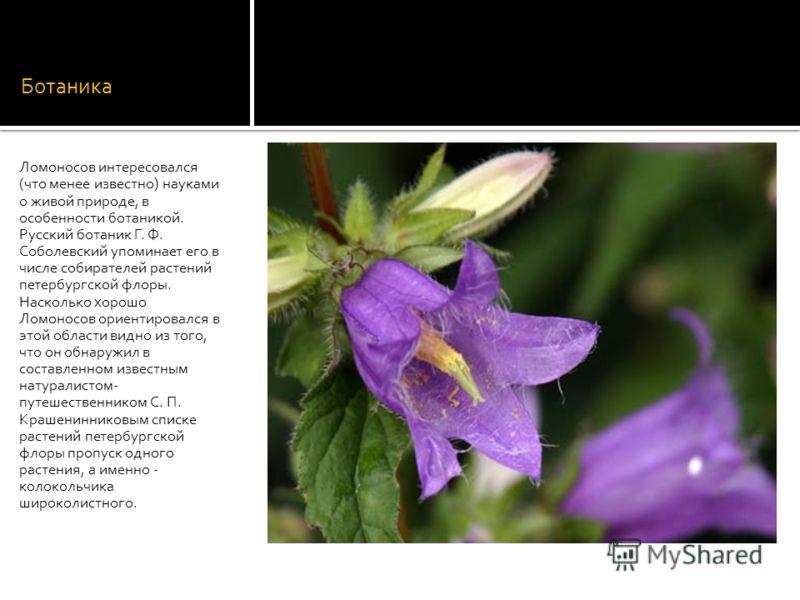 Ботаника Ломоносов интересовался (что менее известно) науками о живой природе, в особенности ботаникой. Русский ботаник Г. Ф. Соболевский упоминает его в числе собирателей растений петербургской флоры. Насколько хорошо Ломоносов ориентировался в этой