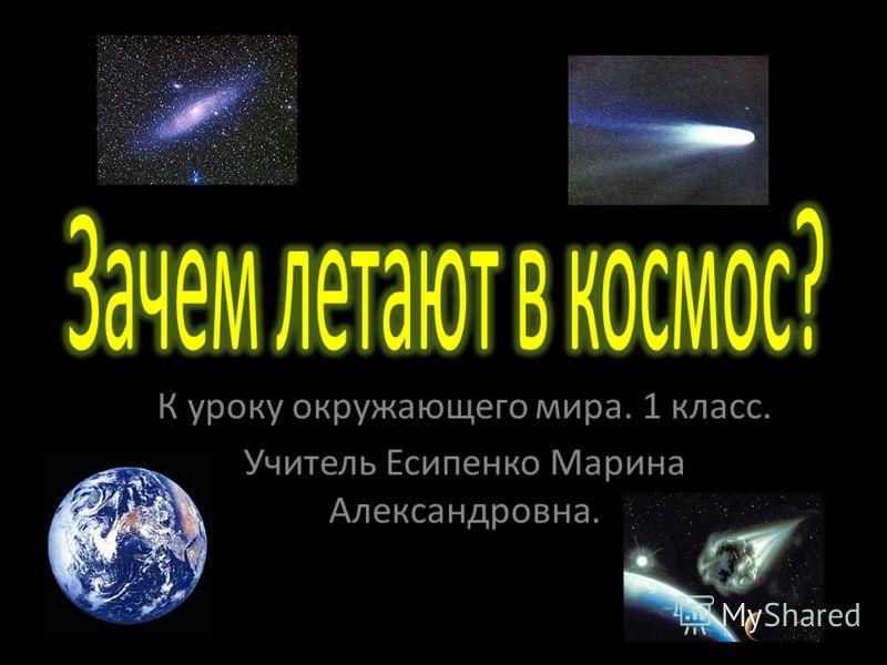 К уроку окружающего мира. 1 класс. Учитель Есипенко Марина Александровна.