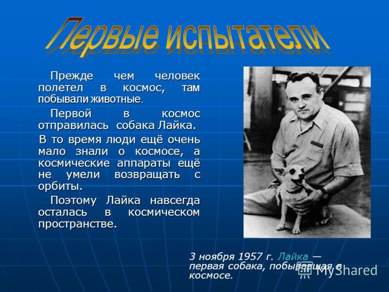 Прежде чем человек полетел в космос, там побывали животные. Прежде чем человек полетел в космос, там побывали животные. Первой в космос отправилась собака Лайка. Первой в космос отправилась собака Лайка. В то время люди ещё очень мало знали о космосе