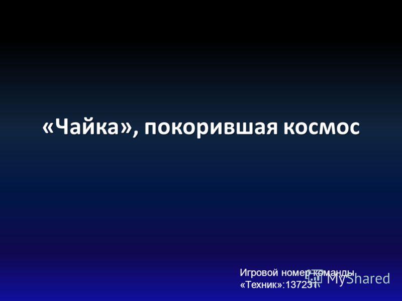 «Чайка», покорившая космос Игровой номер команды «Техник»:137231