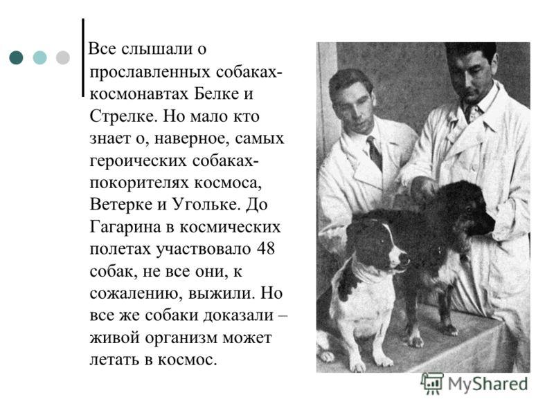 Все слышали о прославленных собаках- космонавтах Белке и Стрелке. Но мало кто знает о, наверное, самых героических собаках- покорителях космоса, Ветерке и Угольке. До Гагарина в космических полетах участвовало 48 собак, не все они, к сожалению, выжил