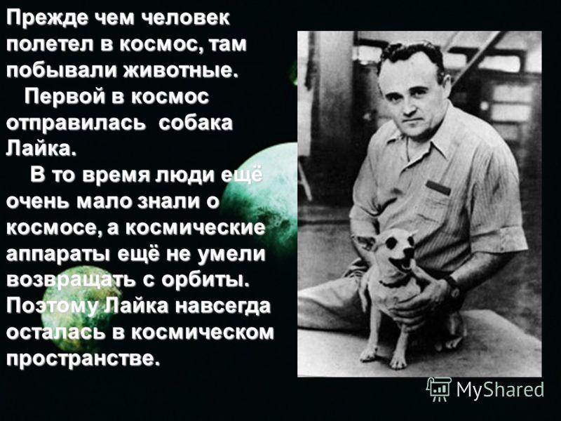 Прежде чем человек полетел в космос, там побывали животные. Первой в космос отправилась собака Лайка. Первой в космос отправилась собака Лайка. В то время люди ещё очень мало знали о космосе, а космические аппараты ещё не умели возвращать с орбиты. П