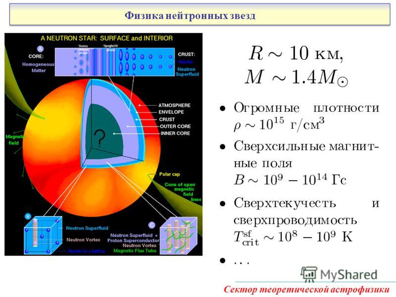 Физика нейтронных звезд Сектор теоретической астрофизики