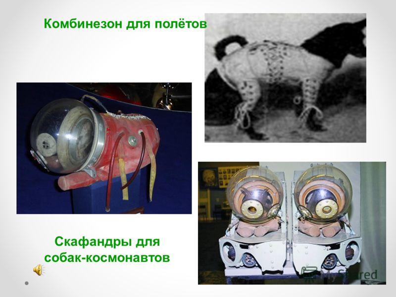 Комбинезон для полётов Скафандры для собак-космонавтов