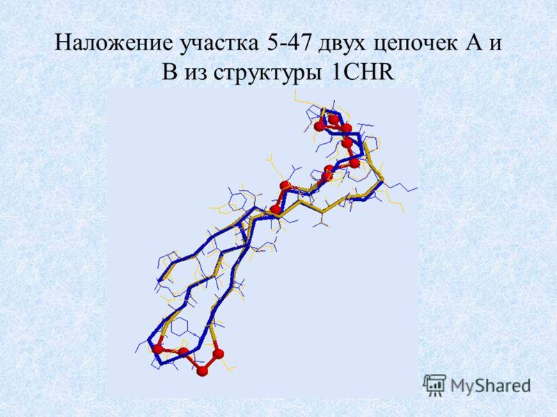 Наложение участка 5-47 двух цепочек A и B из структуры 1CHR