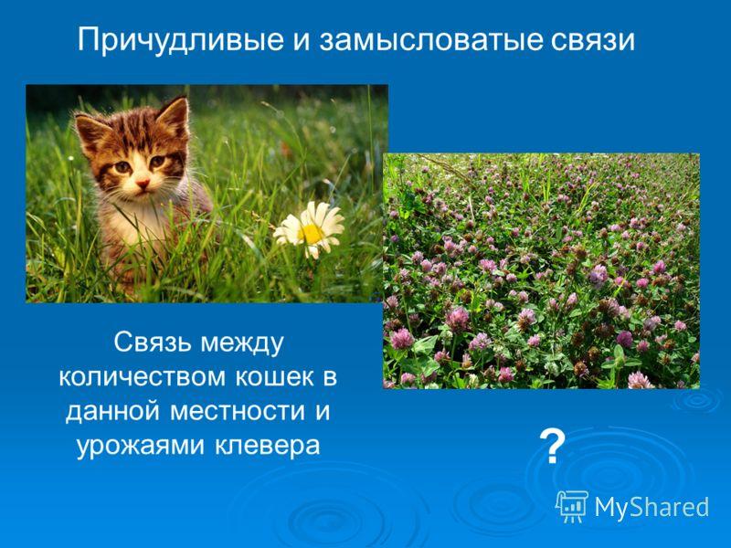 Причудливые и замысловатые связи Связь между количеством кошек в данной местности и урожаями клевера ?