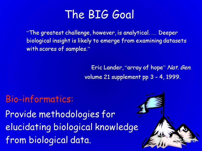 23 The BIG Goal The greatest challenge, however, is analytical. … Deeper biological insight is likely to emerge from examining datasets with scores of samples. Eric Lander, array of hope Nat. Gen. volume 21 supplement pp 3 - 4, 1999. Bio-informatics: