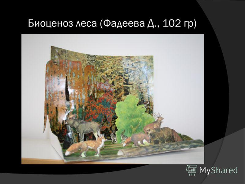 Биоценоз леса (Фадеева Д., 102 гр)