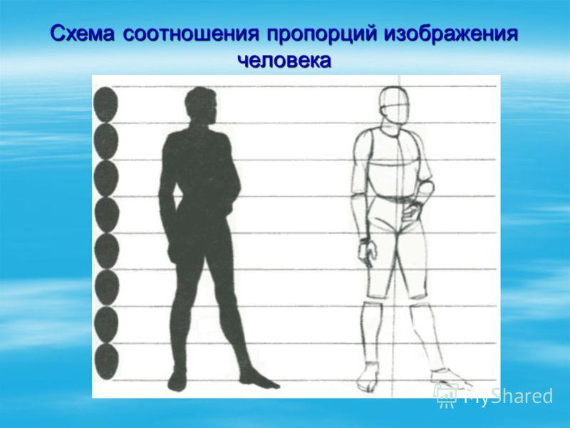 Схема соотношения пропорций изображения человека