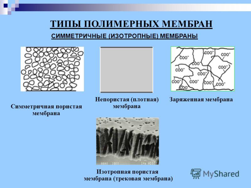 СИММЕТРИЧНЫЕ (ИЗОТРОПНЫЕ) МЕМБРАНЫ ТИПЫ ПОЛИМЕРНЫХ МЕМБРАН Изотропная пористая мембрана (трековая мембрана) Непористая (плотная) мембрана Заряженная мембрана Симметричная пористая мембрана