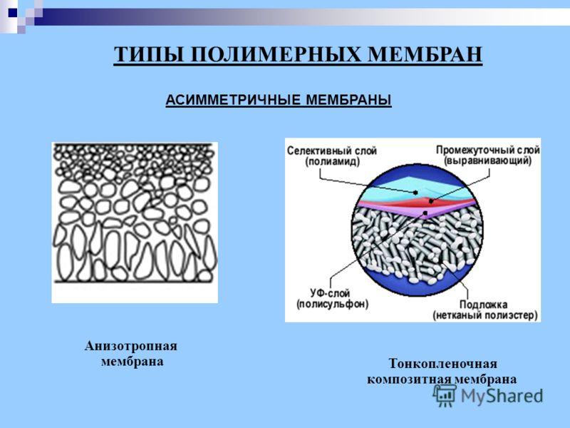 ТИПЫ ПОЛИМЕРНЫХ МЕМБРАН АСИММЕТРИЧНЫЕ МЕМБРАНЫ Анизотропная мембрана Тонкопленочная композитная мембрана