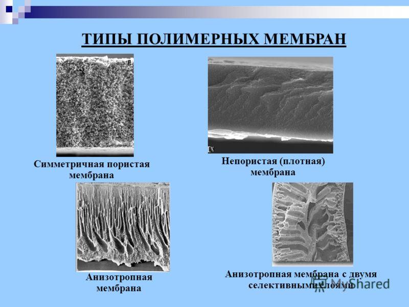 Анизотропная мембрана с двумя селективными слоями Симметричная пористая мембрана Анизотропная мембрана ТИПЫ ПОЛИМЕРНЫХ МЕМБРАН Непористая (плотная) мембрана