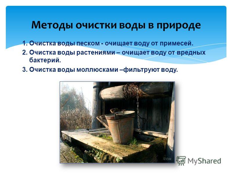 Методы очистки воды в природе 1. Очистка воды песком - очищает воду от примесей. 2. Очистка воды растениями – очищает воду от вредных бактерий. 3. Очистка воды моллюсками –фильтруют воду.