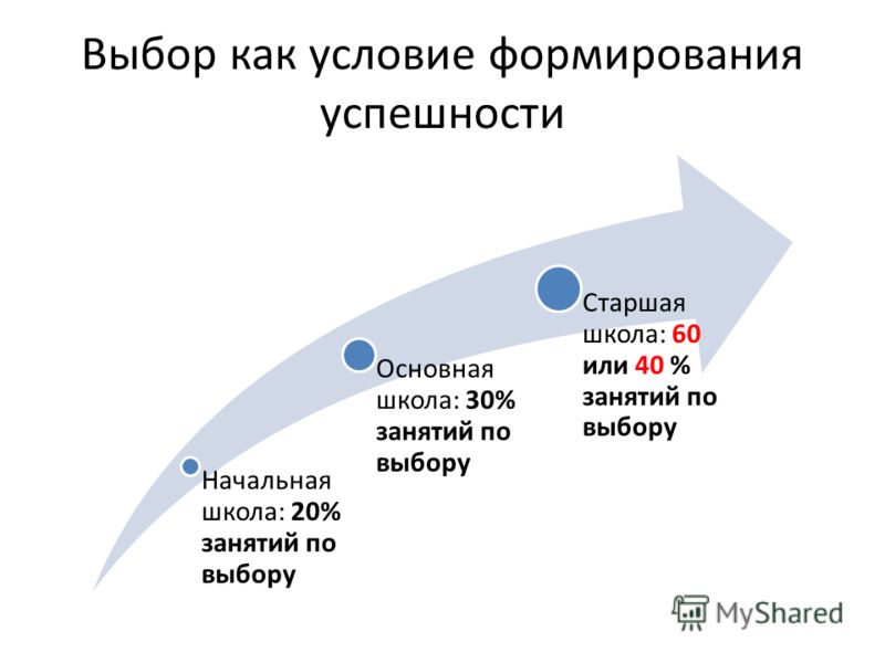 Выбор как условие формирования успешности Начальная школа: 20% занятий по выбору Основная школа: 30% занятий по выбору Старшая школа: 60 или 40 % занятий по выбору