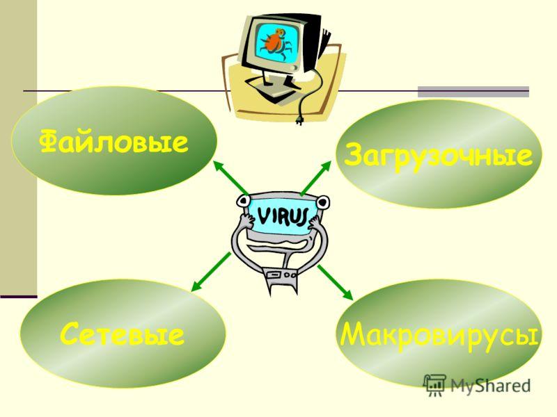 Файловые СетевыеМакровирусы Загрузочные