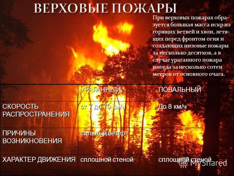 УРАГАННЫЙПОВАЛЬНЫЙ СКОРОСТЬ РАСПРОСТРАНЕНИЯ от 7 до 70 км/ч До 8 км/ч ПРИЧИНЫ ВОЗНИКНОВЕНИЯ сильный ветер - ХАРАКТЕР ДВИЖЕНИЯ сплошной стеной При верховых пожарах обра- зуется большая масса искр из горящих ветвей и хвои, летя- щих перед фронтом огня