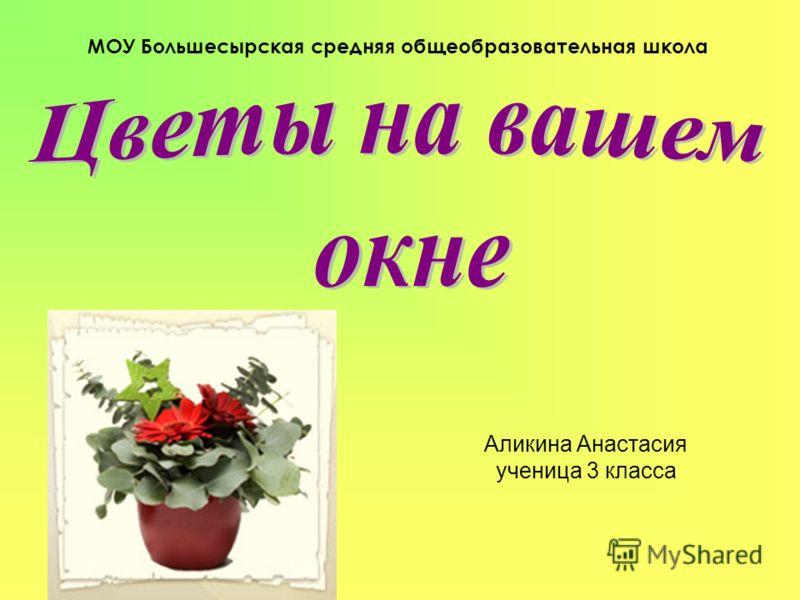 Аликина Анастасия ученица 3 класса МОУ Большесырская средняя общеобразовательная школа