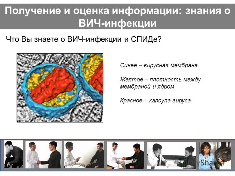 Получение и оценка информации: знания о ВИЧ-инфекции Что Вы знаете о ВИЧ-инфекции и СПИДе? Синее – вирусная мембрана Желтое – плотность между мембраной и ядром Красное – капсула вируса