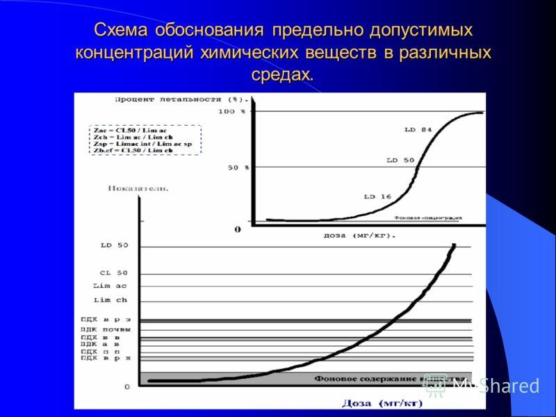 Схема обоснования предельно допустимых концентраций химических веществ в различных средах.