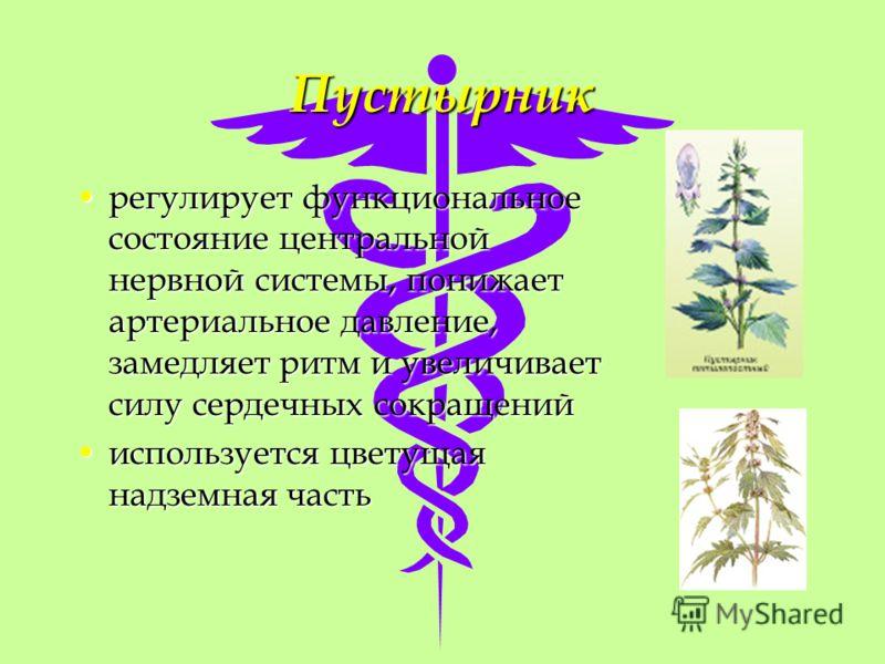Пустырник регулирует функциональное состояние центральной нервной системы, понижает артериальное давление, замедляет ритм и увеличивает силу сердечных сокращенийрегулирует функциональное состояние центральной нервной системы, понижает артериальное да