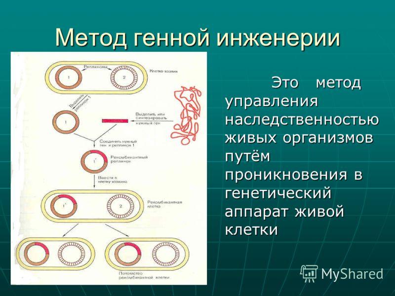 Метод генной инженерии Это метод управления наследственностью живых организмов путём проникновения в генетический аппарат живой клетки