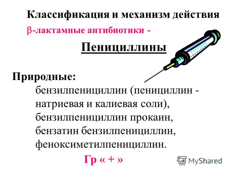 Классификация и механизм действия -лактамные антибиотики - Пенициллины Природные: бензилпенициллин (пенициллин - натриевая и калиевая соли), бензилпенициллин прокаин, бензатин бензилпенициллин, феноксиметилпенициллин. Гр « + »