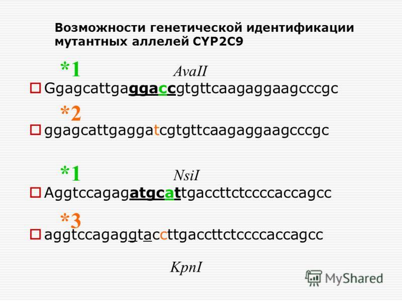 Возможности генетической идентификации мутантных аллелей CYP2C9 Ggagcattgaggaccgtgttcaagaggaagcccgc ggagcattgaggatcgtgttcaagaggaagcccgc Aggtccagagatgcattgaccttctccccaccagcc aggtccagaggtaccttgaccttctccccaccagcc AvaII NsiI KpnI *2 *1 *3