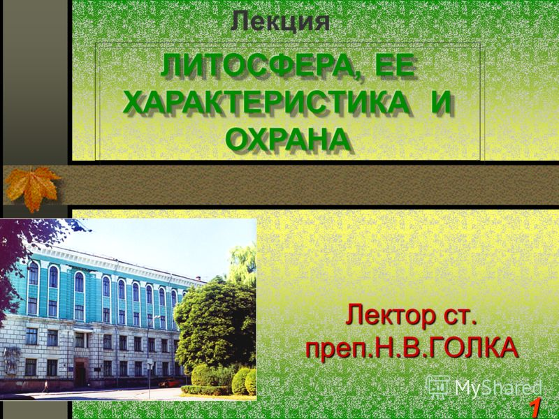 Лектор ст. преп.Н.В.ГОЛКА Лекция1