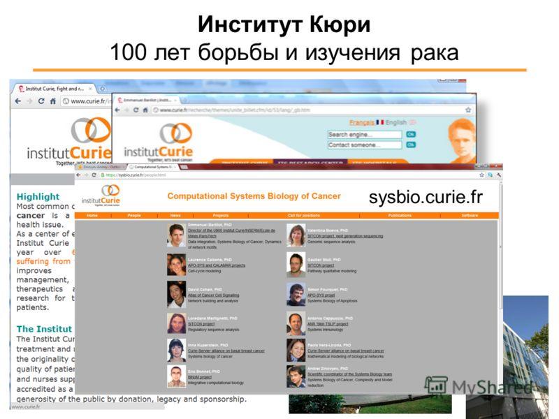 Институт Кюри 100 лет борьбы и изучения рака sysbio.curie.fr