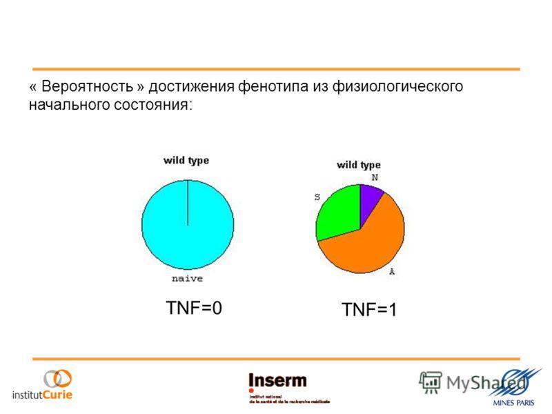« Вероятность » достижения фенотипа из физиологического начального состояния: TNF=0 TNF=1