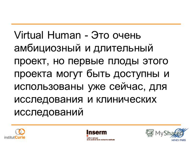 Virtual Human - Это очень амбициозный и длительный проект, но первые плоды этого проекта могут быть доступны и использованы уже сейчас, для исследования и клинических исследований