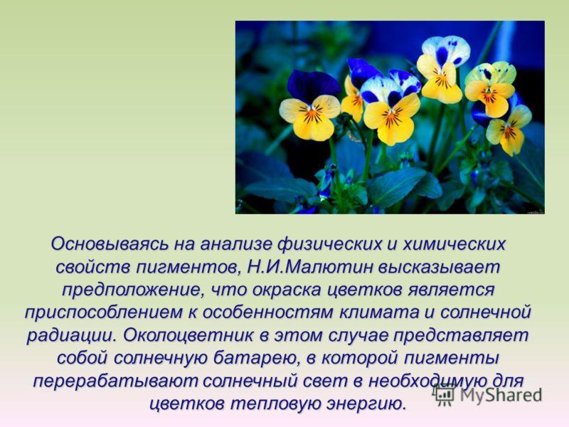 Основываясь на анализе физических и химических свойств пигментов, Н.И.Малютин высказывает предположение, что окраска цветков является приспособлением к особенностям климата и солнечной радиации. Околоцветник в этом случае представляет собой солнечную