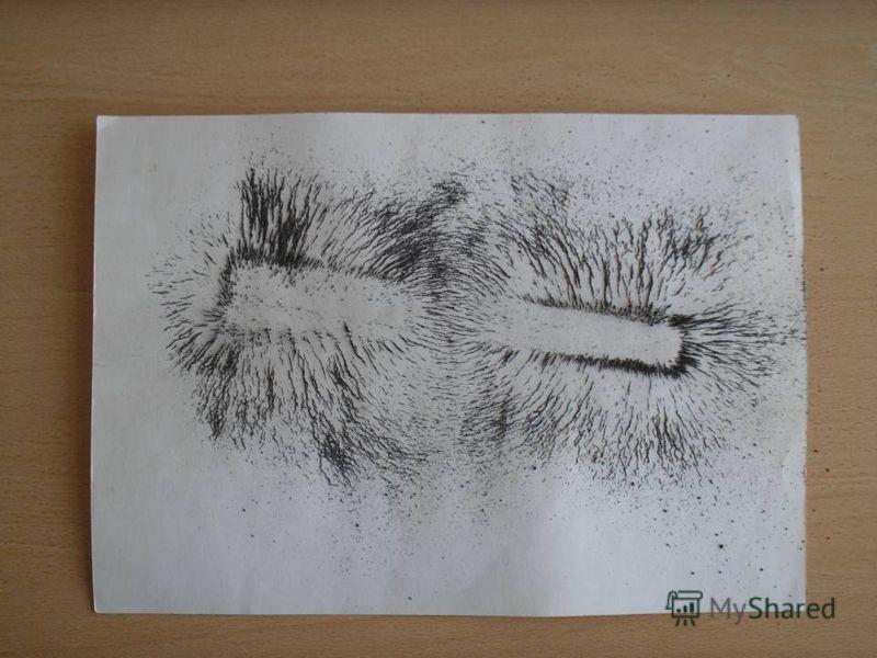 2. Положили лист картона на полосовой магнит и насыпали на него железные опилки. Получили изображение спектра полосового магнита.