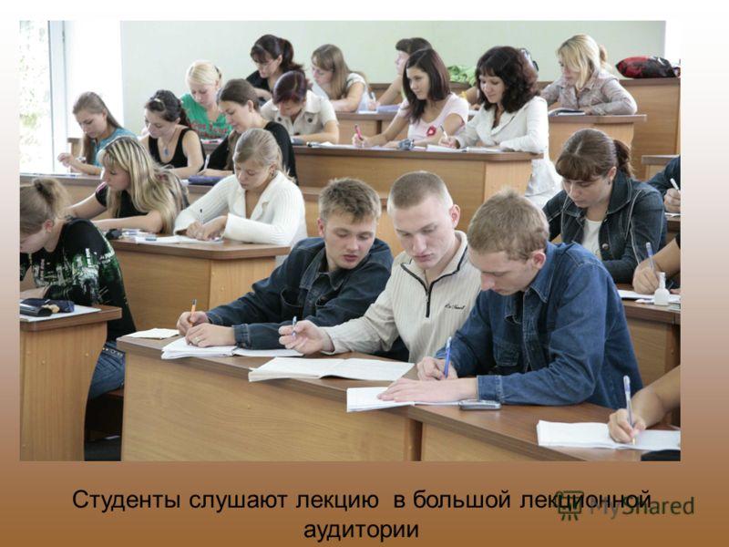 Студенты слушают лекцию в большой лекционной аудитории
