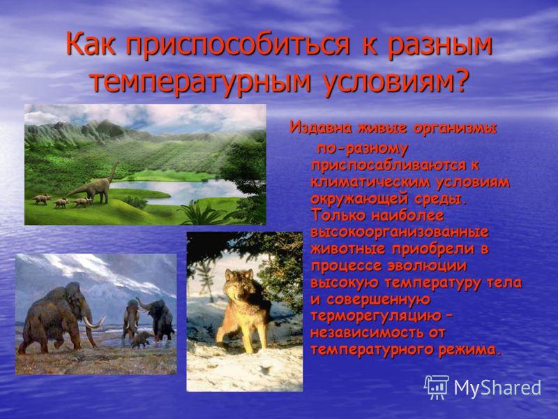 Как приспособиться к разным температурным условиям? Издавна живые организмы по-разному приспосабливаются к климатическим условиям окружающей среды. Только наиболее высокоорганизованные животные приобрели в процессе эволюции высокую температуру тела и