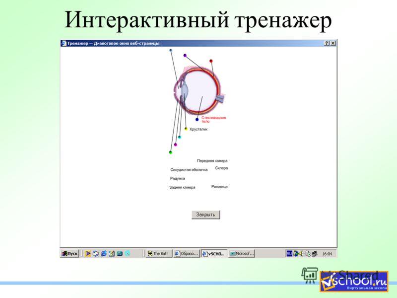 Интерактивный тренажер
