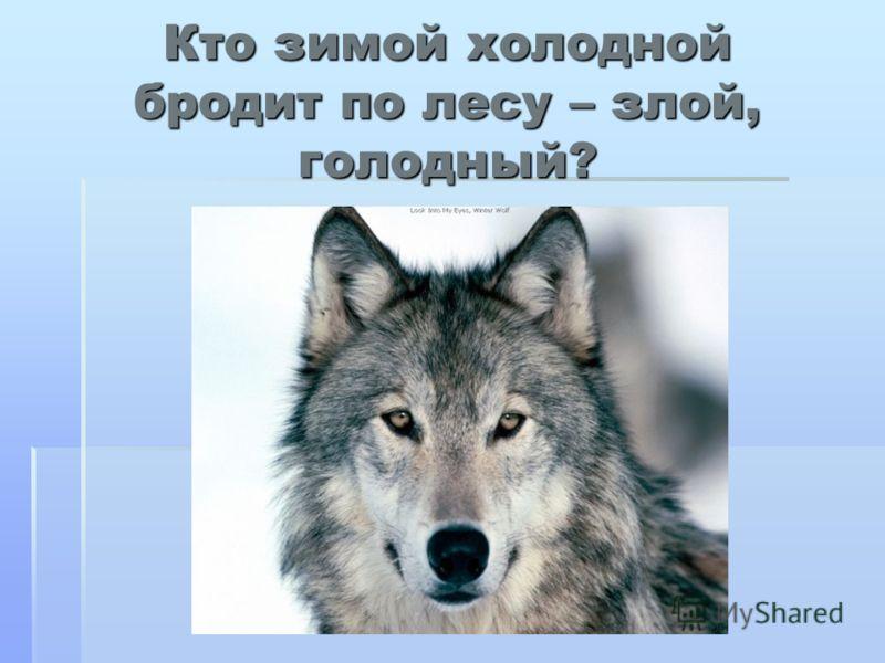 Кто зимой холодной бродит по лесу – злой, голодный?