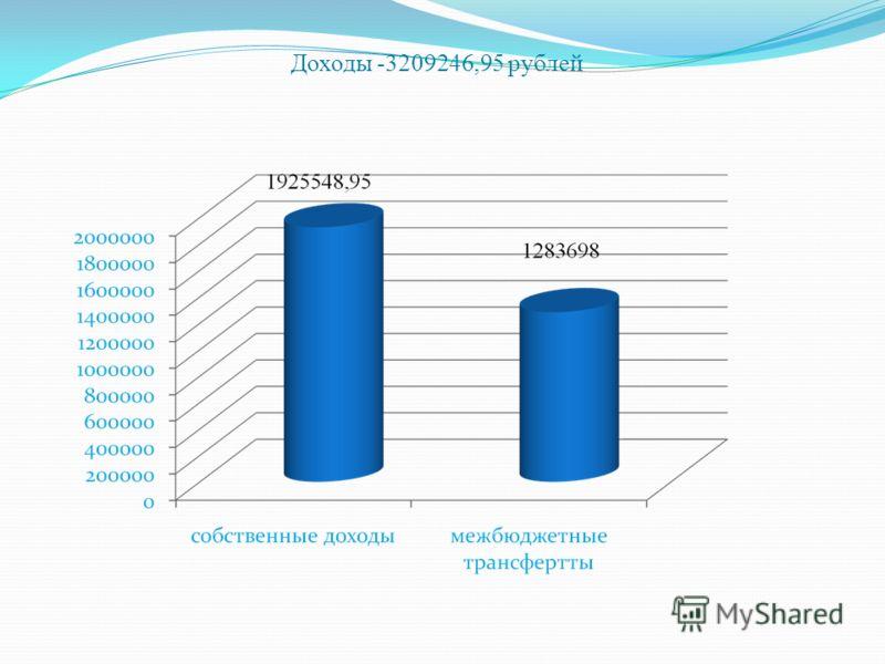 Доходы -3209246,95 рублей