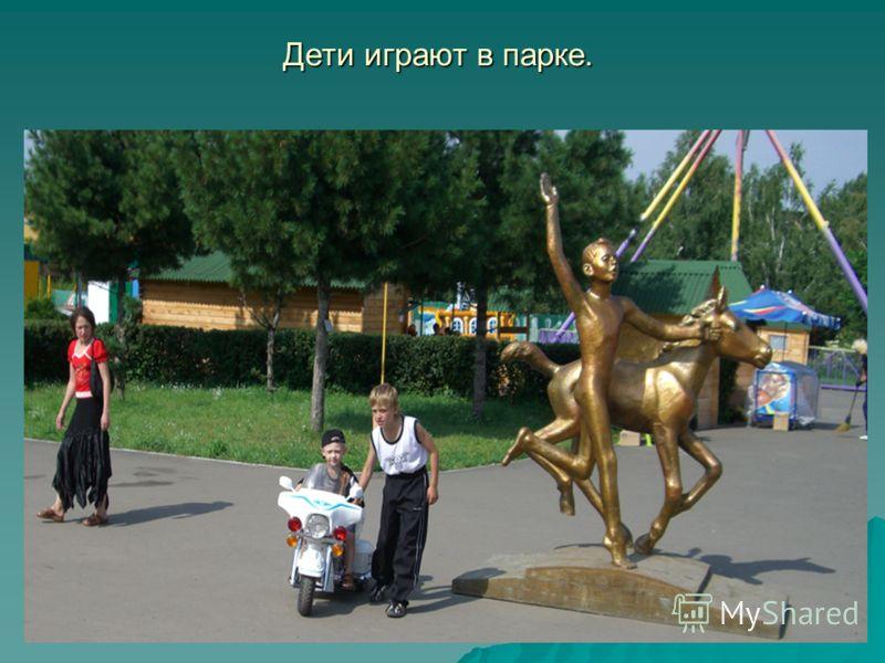 Дети играют в парке.