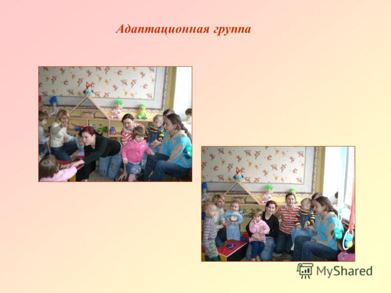 Адаптационная группа