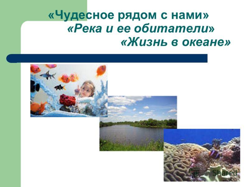 «Чудесное рядом с нами» «Река и ее обитатели» «Жизнь в океане»