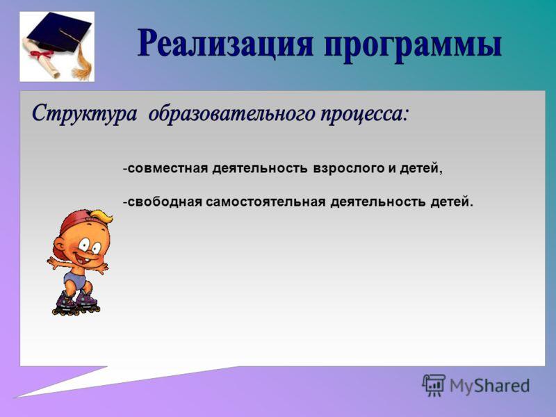 -совместная деятельность взрослого и детей, -свободная самостоятельная деятельность детей.