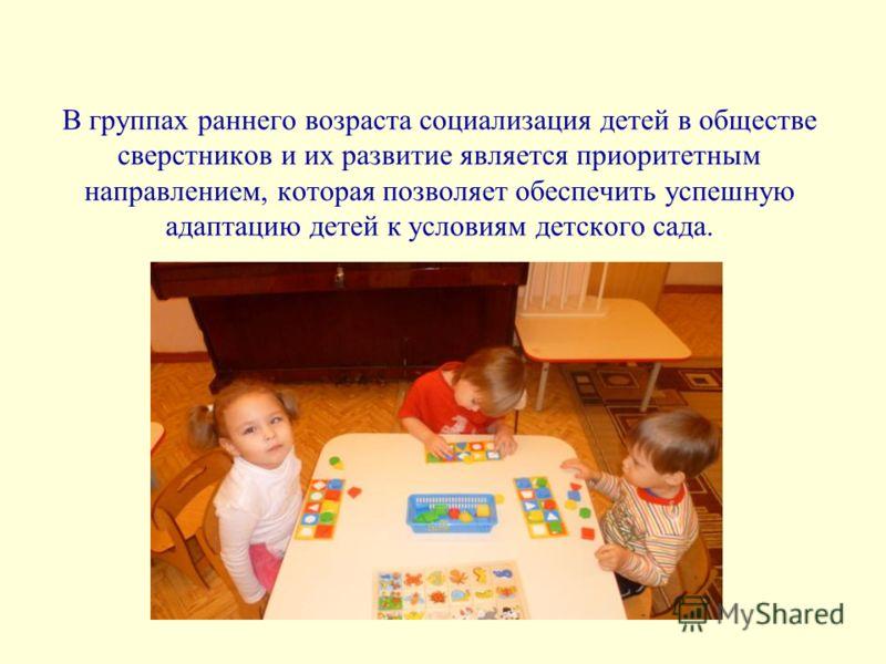 В группах раннего возраста социализация детей в обществе сверстников и их развитие является приоритетным направлением, которая позволяет обеспечить успешную адаптацию детей к условиям детского сада.