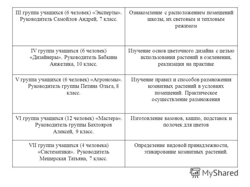III группа учащихся (6 человек) «Эксперты». Руководитель Самойлов Андрей, 7 класс. Ознакомление с расположением помещений школы, их световым и тепловым режимом IV группа учащихся (6 человек) «Дизайнеры». Руководитель Бабкина Анжелика, 10 класс. Изуче