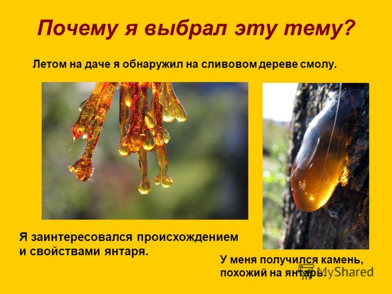Почему я выбрал эту тему? Летом на даче я обнаружил на сливовом дереве смолу. Я заинтересовался происхождением и свойствами янтаря. У меня получился камень, похожий на янтарь.
