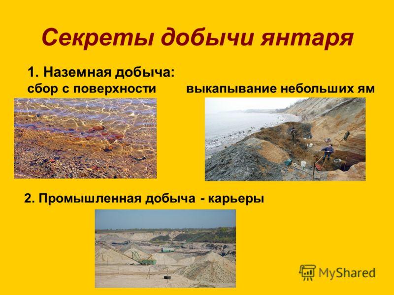 Секреты добычи янтаря 1. Наземная добыча: сбор с поверхности выкапывание небольших ям 2. Промышленная добыча - карьеры