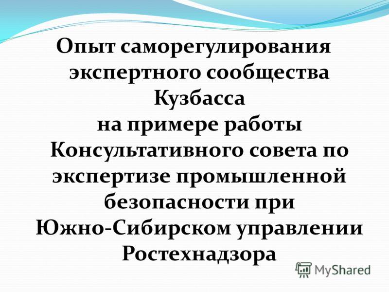 Опыт саморегулирования экспертного сообщества Кузбасса на примере работы Консультативного совета по экспертизе промышленной безопасности при Южно-Сибирском управлении Ростехнадзора