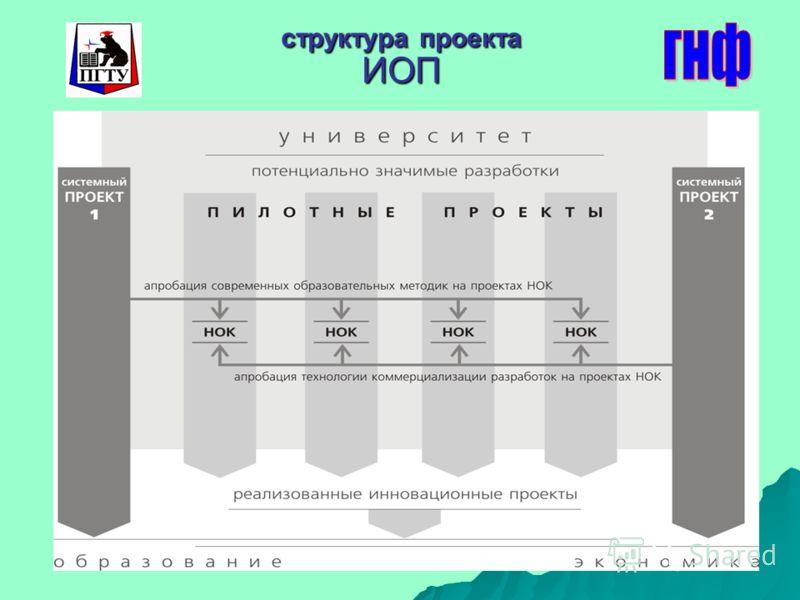структура проекта ИОП